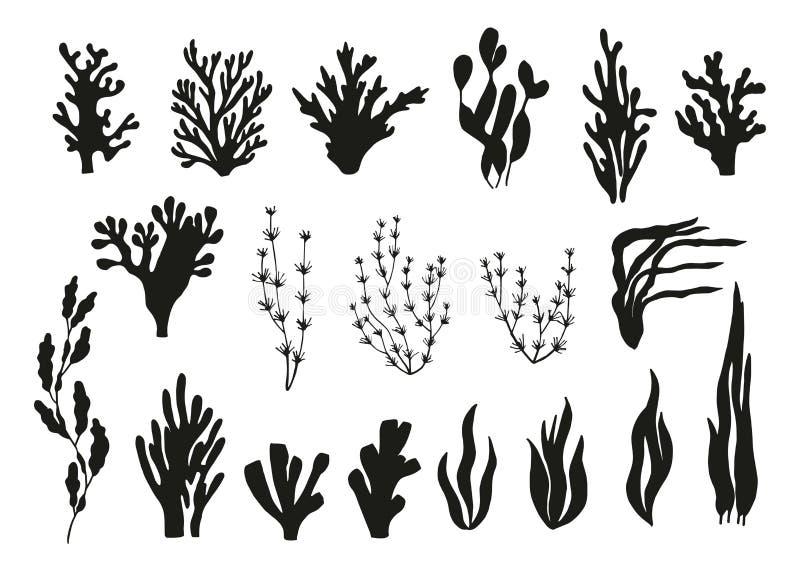 Algen en koralen geplaatst vector stock illustratie