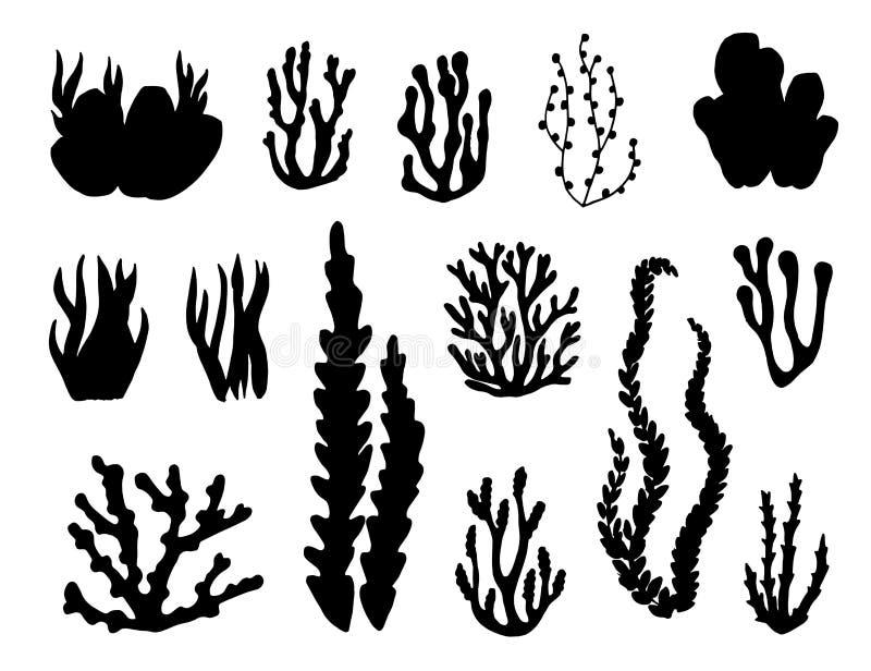 Algen en koralenreeks vectorsilhouetten royalty-vrije illustratie