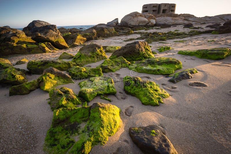Spain Andalusia algae on rocks beach Beach Sunset bunker royalty free stock photo