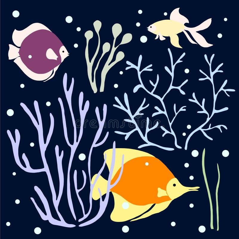 Algen, Koralle, bunte Illustration der Fische lizenzfreie abbildung