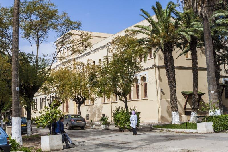 Algeri fotografie stock libere da diritti