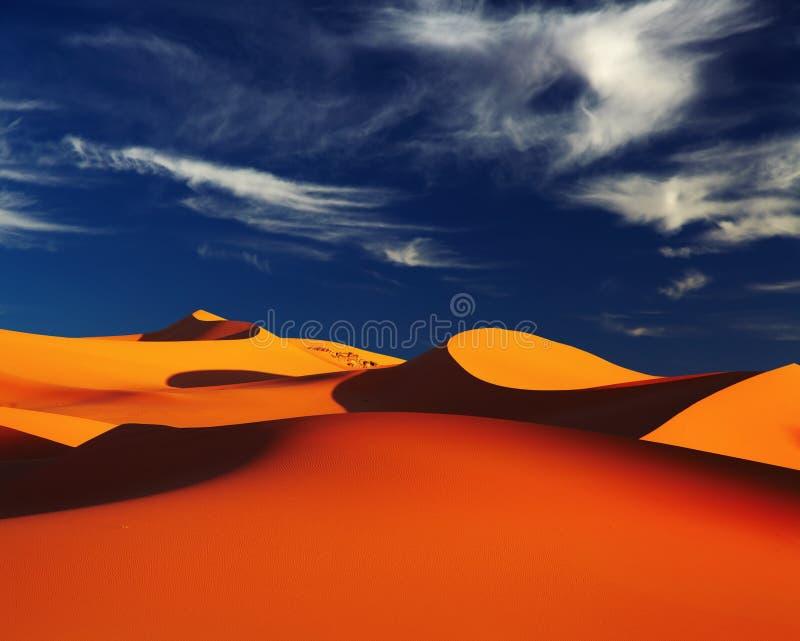algeria öken sahara royaltyfri foto