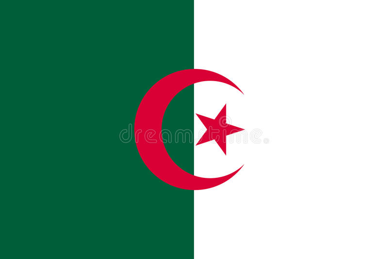 Algeria flag flat vector illustration