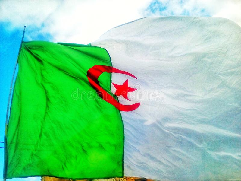 Algeria flag. Flag of Algeria Star of the Crescent green and white and red stock photo