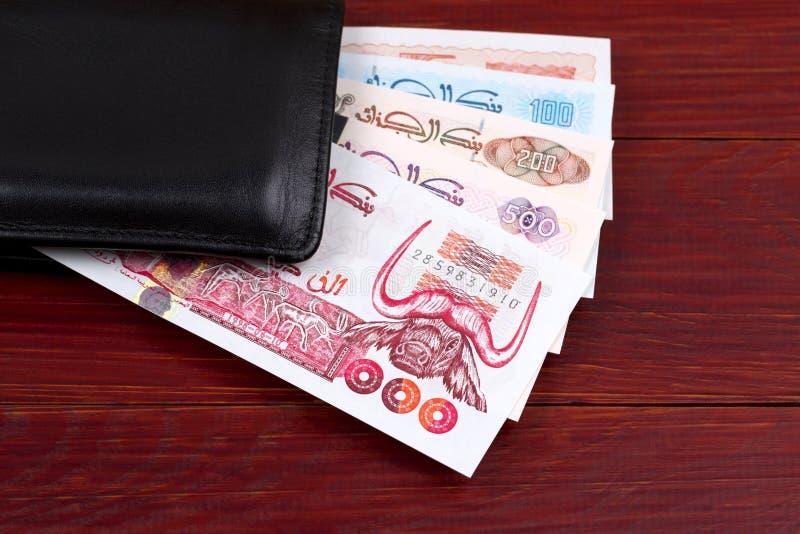 Algerisk dinar i den svarta plånboken fotografering för bildbyråer