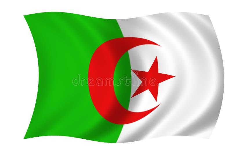 Algerisk Flagga Arkivbild
