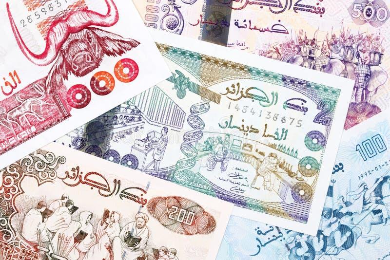 Algeriska pengar en bakgrund fotografering för bildbyråer