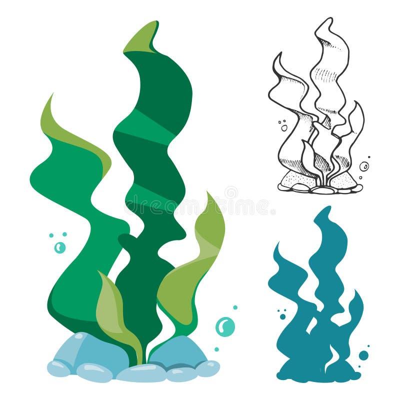 Alghe di scarabocchio, della siluetta e del fumetto messe illustrazione di stock