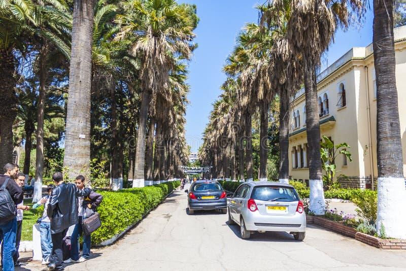 Algiers royalty-vrije stock foto