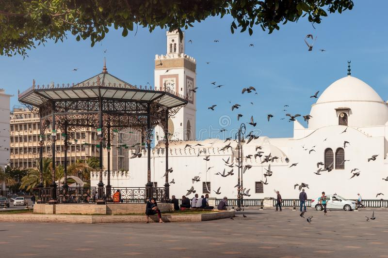 Cute place in Algiers during summer. Algiers is the capital and largest city of Algeria stock images