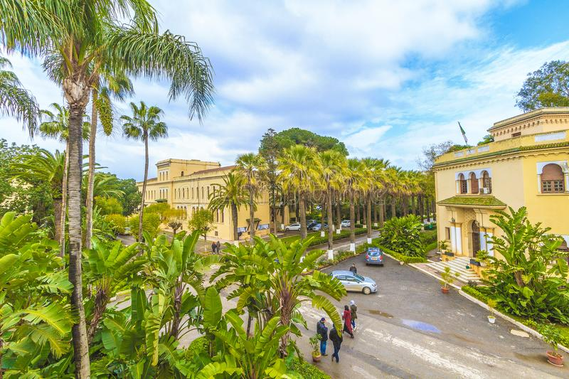 Algiers. National higher school of agronomy in  Algiers, in Algeria royalty free stock photography