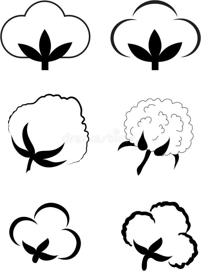 Algodão (Gossypium). ilustração do vetor