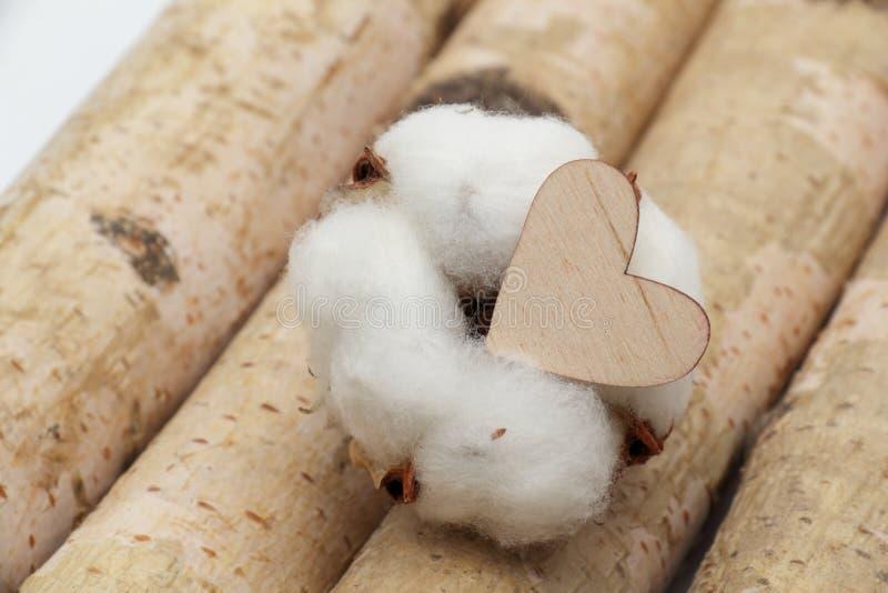 Algodón y corazón de madera imagen de archivo