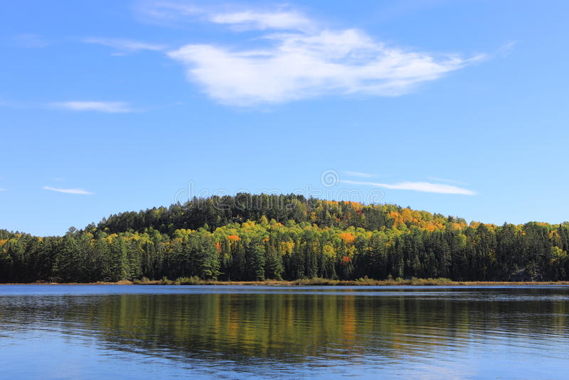 Algonquin λίμνη και δέντρα το φθινόπωρο στοκ εικόνες