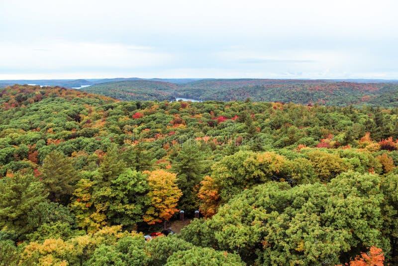 Algonquin εθνικό πάρκο το φθινόπωρο στοκ φωτογραφίες με δικαίωμα ελεύθερης χρήσης