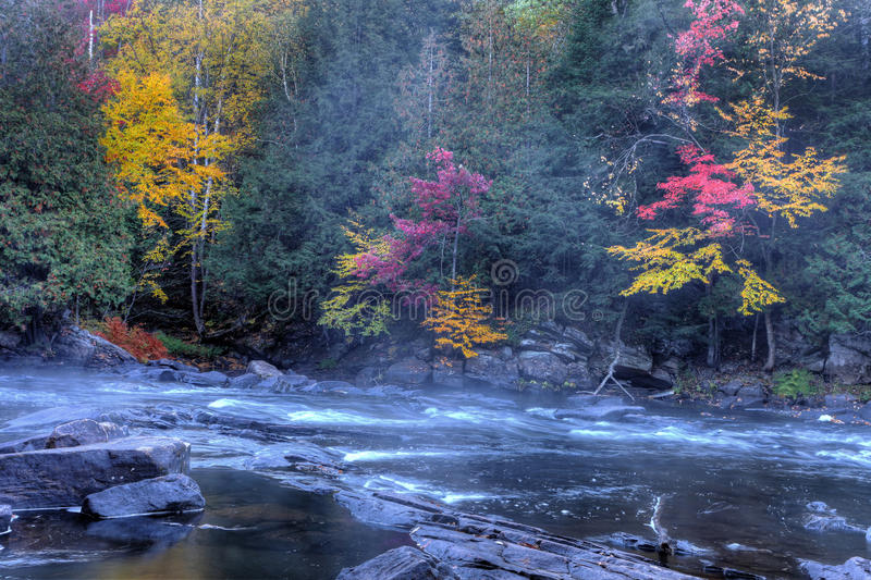 Algonquin ορμητικά σημεία ποταμού ποταμών το φθινόπωρο στοκ φωτογραφίες