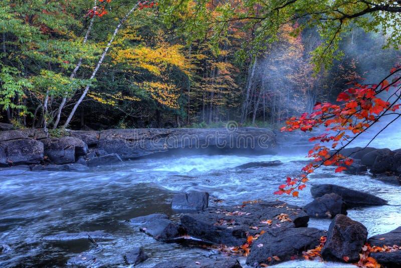 Algonquin ορμητικά σημεία ποταμού ποταμών το φθινόπωρο στοκ εικόνα με δικαίωμα ελεύθερης χρήσης