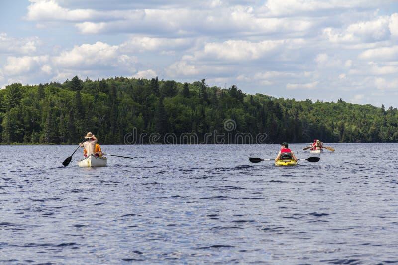 Algonquin φύση Parc στον Καναδά στοκ εικόνες με δικαίωμα ελεύθερης χρήσης