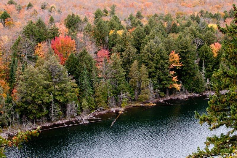algonquin dźwigarki jeziora park obrazy royalty free