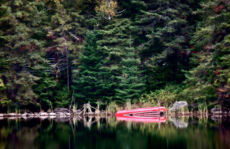 Algonquin de Rode Kano van Parkmuskoka Ontario royalty-vrije stock afbeeldingen