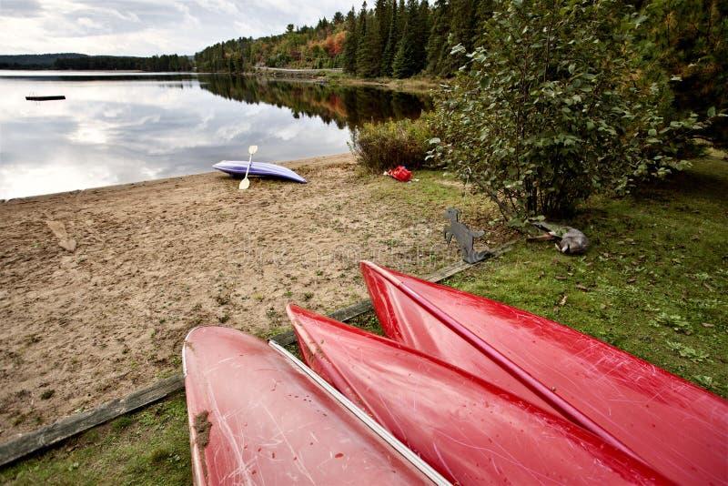 Algonquin het Meerwildernis van Parkmuskoka Ontario royalty-vrije stock foto