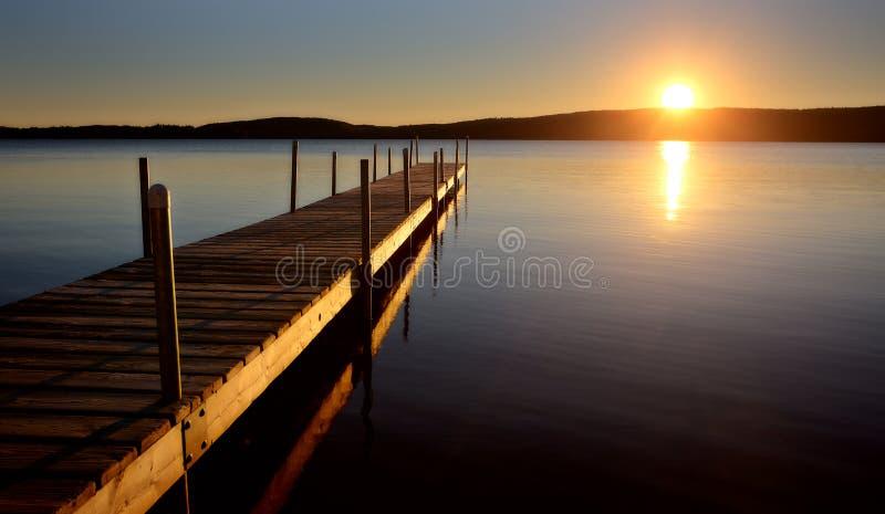 Algonquin parkerar Muskoka Ontario sjövildmarken royaltyfri fotografi