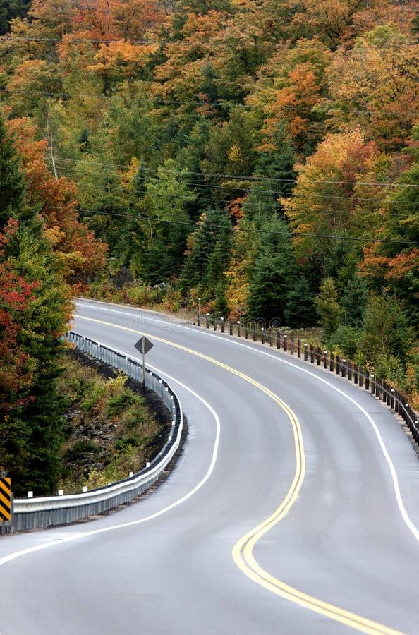 Algonquin Road van Parkmuskoka Ontario royalty-vrije stock afbeelding