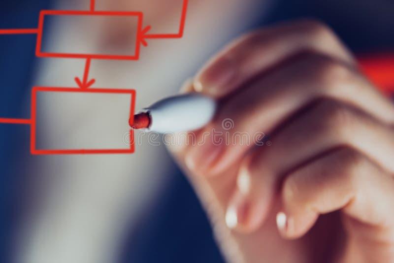 Algoritmo dell'albero di decisione del disegno della donna di affari per l'affare analy fotografia stock