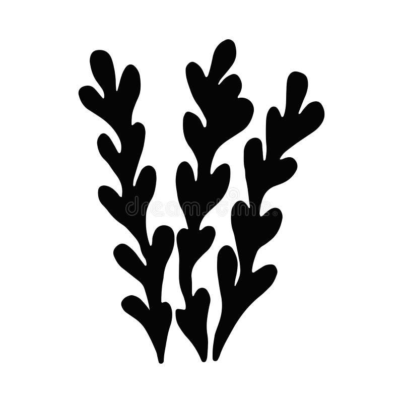 Algue en isolation Silhouette noire Usine marine illustration stock