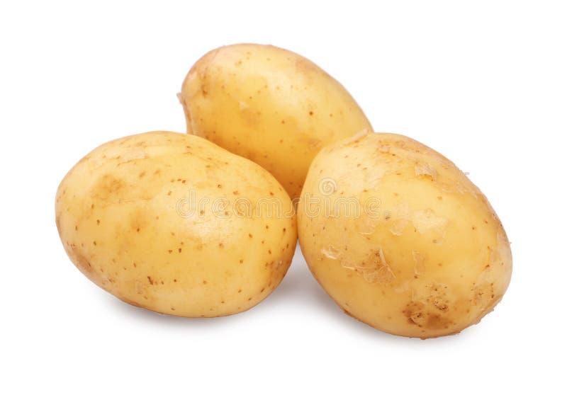 Algumas batatas novas cruas, orgânicas e frescas, isoladas em um fundo branco Três limpos e luz dura - batatas marrons imagens de stock
