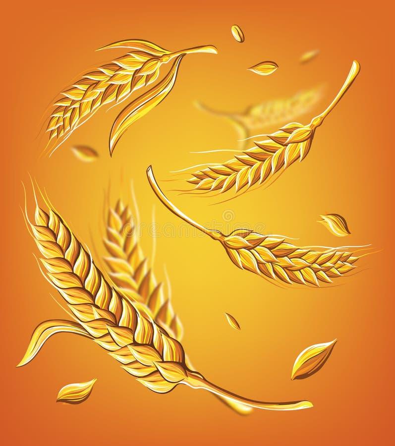 Algumas orelhas do trigo em um esboço bege do vetor do desenho da mão do fundo ilustração do vetor