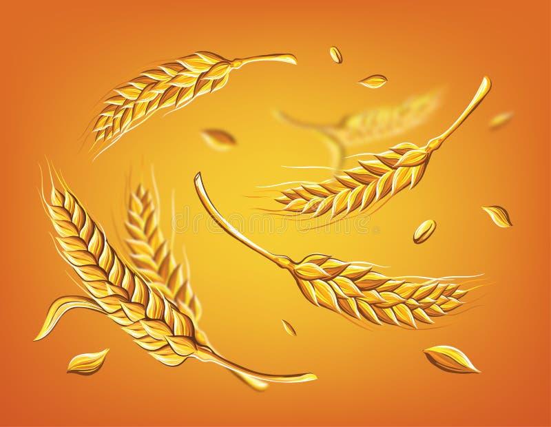 Algumas orelhas do trigo em um esboço bege do vetor do desenho da mão do fundo ilustração stock