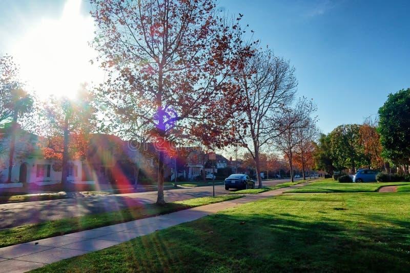 Algunos céspedes bastante grandes del jardín en un poco de calle en Beverly Hills foto de archivo libre de regalías