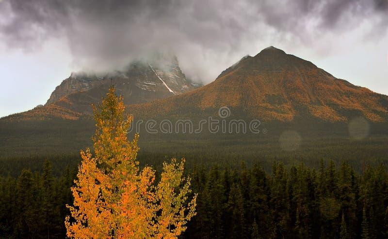 Algunos descensos en Alberta imagen de archivo libre de regalías