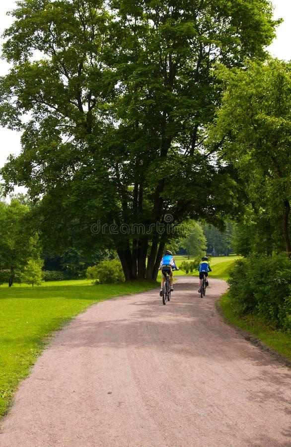 Alguns bicyclists foto de stock