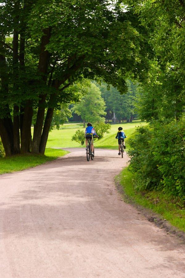 Alguns bicyclists na trilha do parque