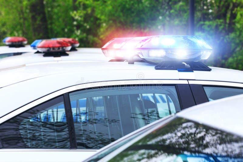 Alguns carros de polícia com foco na sirene iluminam-se Lig bonito da sirene imagens de stock