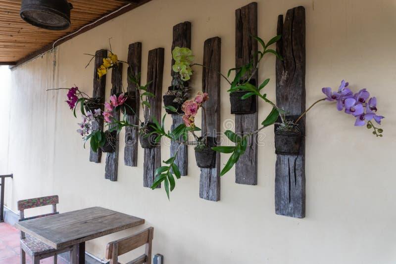 Alguns flores da orqu?dea e tipos coloridos de decora??es da parede em um restaurante em Ubud, Bali imagem de stock royalty free