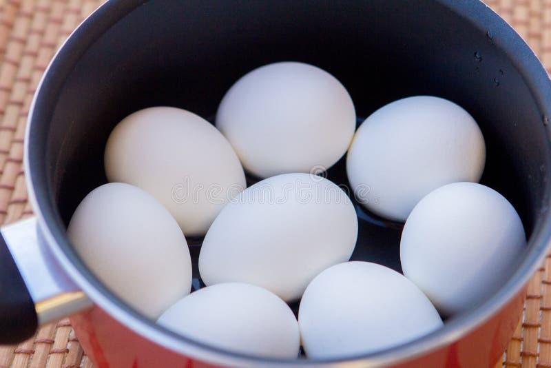 Alguns ovos cozidos em uma caçarola no sol fotos de stock