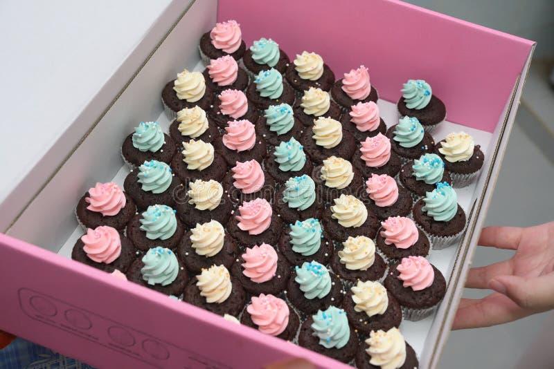 Alguns queques pequenos de creme coloridos da pastelaria em uma caixa cor-de-rosa imagem de stock