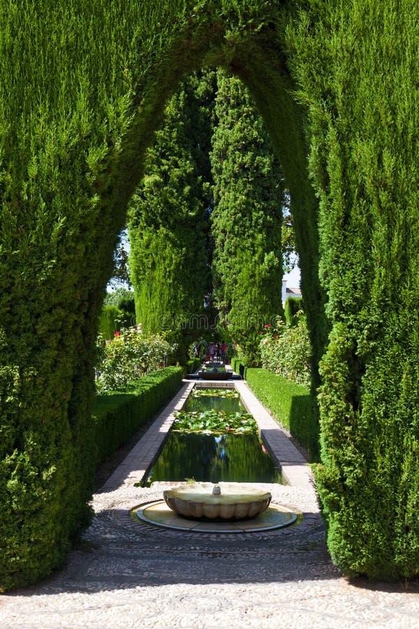 alhambra som förbluffar de trädgård granada royaltyfria foton