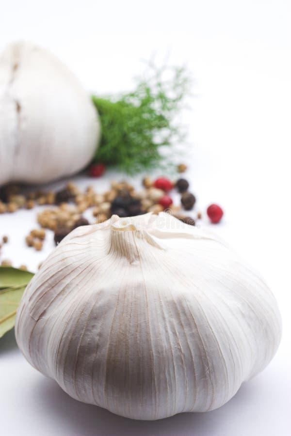 Download Alho foto de stock. Imagem de alimentos, italiano, cozinha - 102046