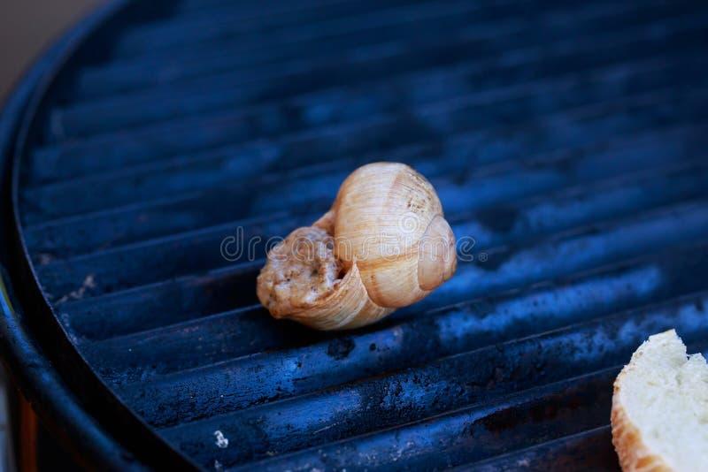 Alho assado dos caracóis do escargot fotos de stock