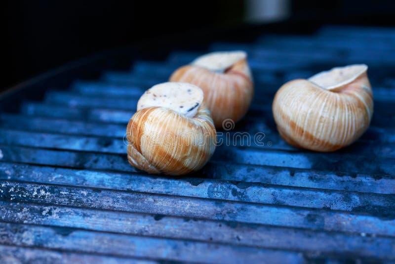 Alho assado dos caracóis do escargot fotografia de stock royalty free