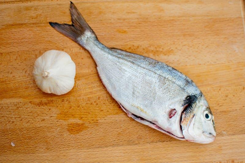 Alho e mahi-mahi (peixes do golfinho) foto de stock royalty free