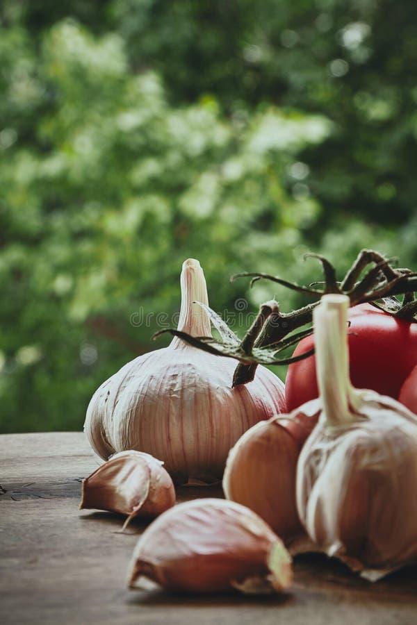 Alho e tomates imagem de stock