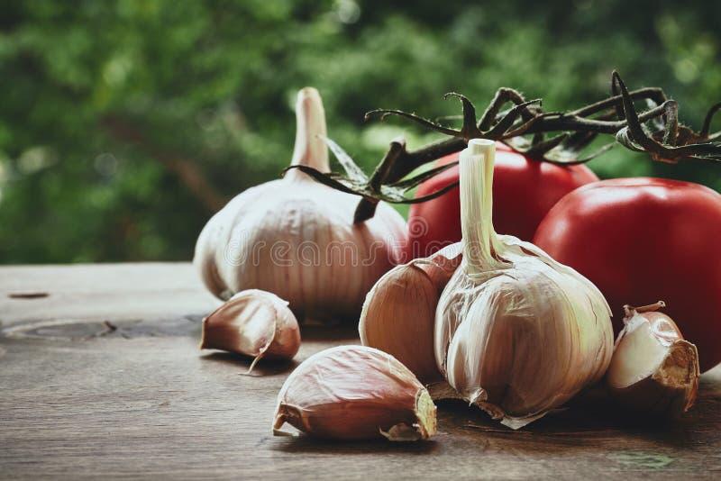 Alho e tomates fotografia de stock