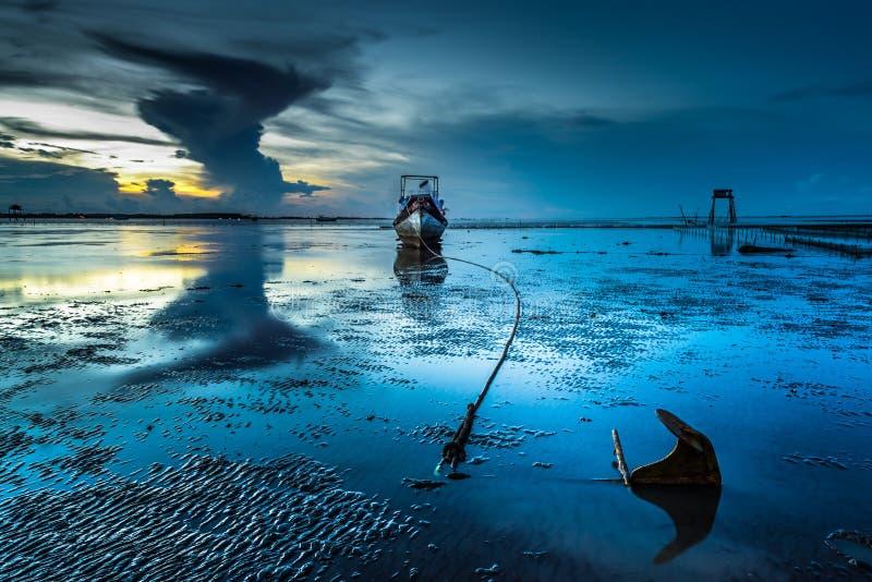 Ali del mare fotografie stock libere da diritti