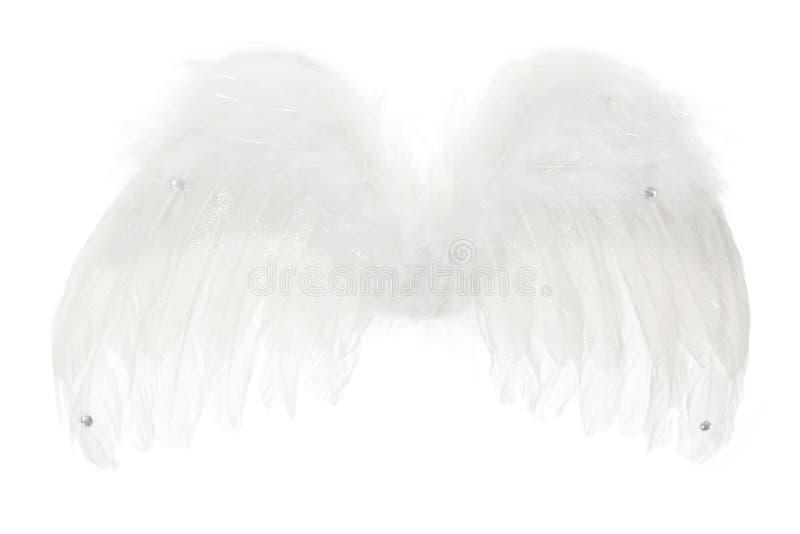 Ali di angelo immagine stock libera da diritti