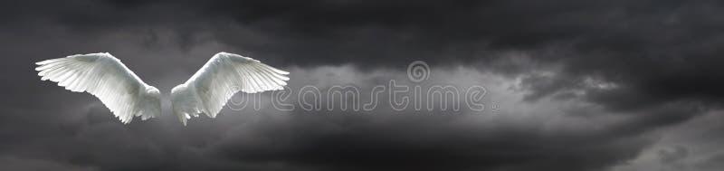 Ali di angelo con il fondo tempestoso del cielo fotografia stock libera da diritti